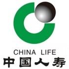 中国人寿威龙团队